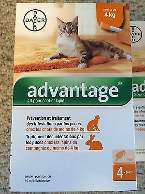 ADVANTAGE ORANGE for Cats Under 9 lbs (4-Pack)  - FAST FREE SHIPPING -