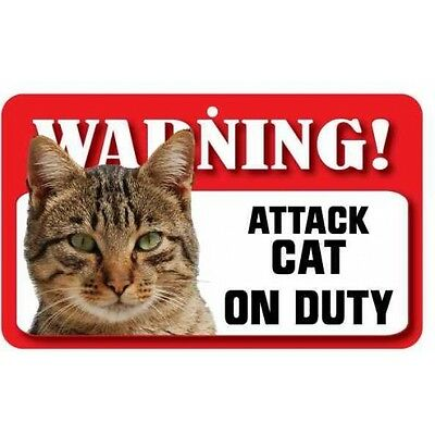 Cat Tabby Pet Sign DS082
