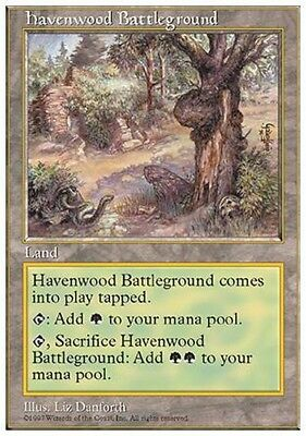 Campo di Battaglia di Havenwood - Battleground MTG 5E