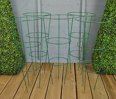 Set of 5 x Conical Garden Plant Support Rings (75cm) by Gardman