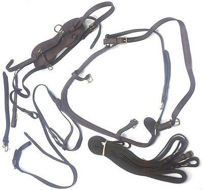 New Single Horse Leather Driving Harness(Seven Pieces) Size-Cob