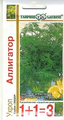 """Dill """"Alligator"""" Russian High Quality seeds"""