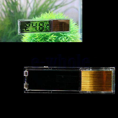LCD Poisson Reptile aquarium de Temp thermomètre Marine Température Or GF
