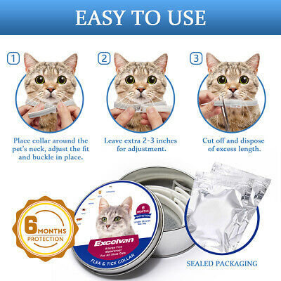 Anti Flea & Tick Collar For Dog Cat Pet 6 Month Protection Neck Strap Waterproof
