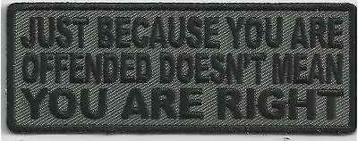 Just Because You Are Offended, Doesn't Mean That You Are Right-  Iron On Patch