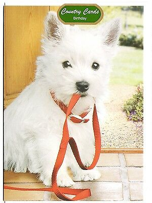 West Highland White Terrier Birthday Card Handmade Westie