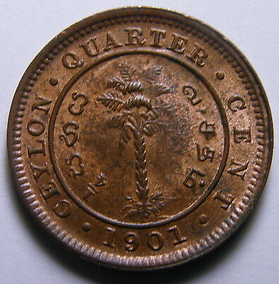 1901 Ceylon, Bronze Quarter Cent - Grades To Uncirculated Condition