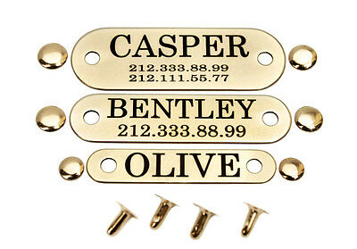 Dog Collar Nameplate Tag Personalised Laser Engraved Brass Steel 24K Gold Plated