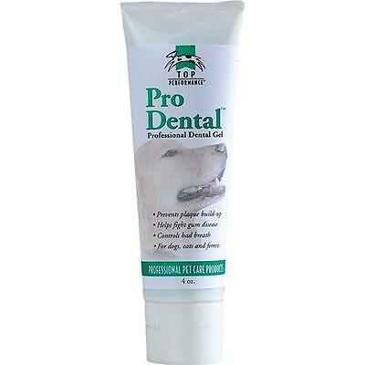 PetEdge TP97604 Top Performance Prodental 4oz Gel