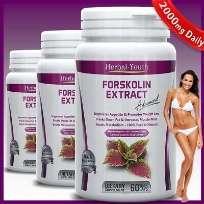FORSKOLIN CAPSULES Pure Coleus Forskohlii EXTRACT Standardized 20% 2000mg Daily