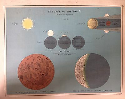 Astronomical Antique Map 1891 Large 2 Sided Eclipses the Sun & the Moon Atlas