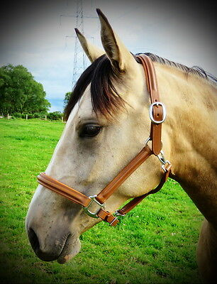 FSS German Leather Comfort Show Horse Halter Headcollar TOBACCO LONDON PADDED