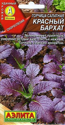 "Mustard greens ""Red Velvet"" Russian High Quality seeds"