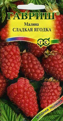"Raspberry ""Sweet berry"" Russian High Quality"