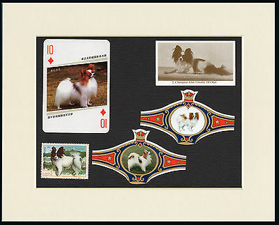 Papillon Mounted Set Of Vintage Dog Collectable Cards And Stamps Great Gift