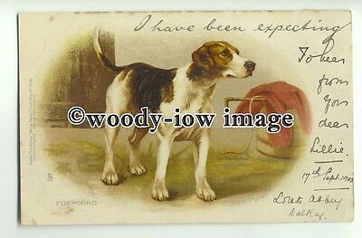 """an0275 - Foxhound """"Write Away"""" Early Chromo-Litho, undivided - Postcard - Tuck's"""