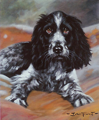 "COCKER SPANIEL BLUE ROAN BLACK DOG ART LIMITED EDITION PRINT - ""Young Love"""