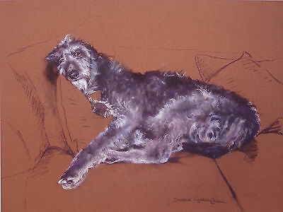 "DEERHOUND SCOTTISH DOG FINE ART LIMITED EDITION PRINT - ""Dream Catcher"" # 32/395"