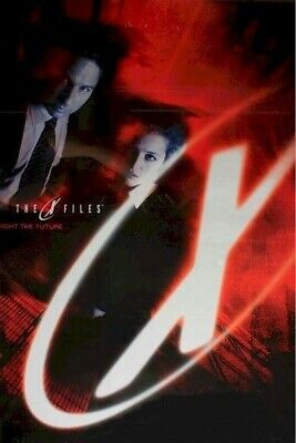 X-FILES ~ FIGHT THE FUTURE ~ STYLE D 23x35 MOVIE POSTER David Duchovny Xfiles