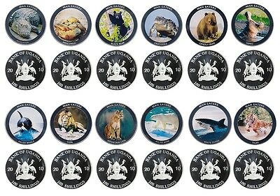 Uganda 100 Shillings Silver Plated 12 Piece (PCS) Coin Set,2010,Animal Man Eater