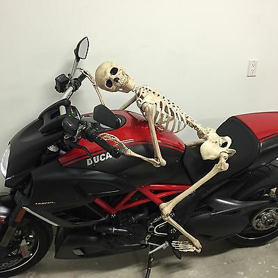 High Quality Life Size Skeleton Prop 5 Feet Amazing Look,solid,quality,halloween