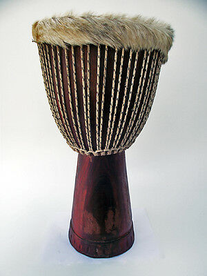 Afrika Mali Djembe Rosewood Hartholz Drum Trommel Absolutes Schnäppchen Top 663