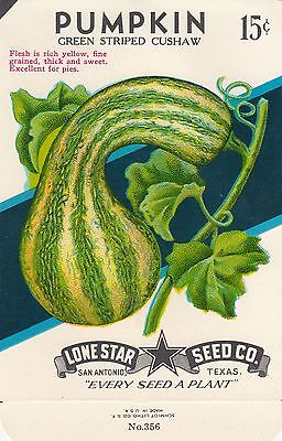 Vintage  seed packets -15¢ Pumpkin Green Striped-----188