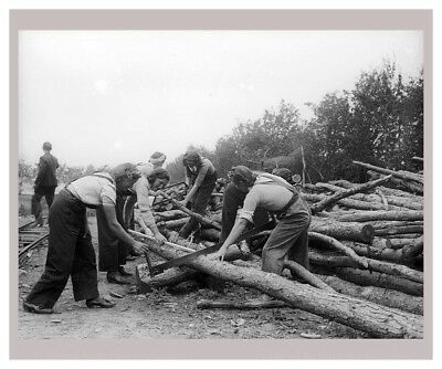 Photographic Print, Women at War - On the Land 1, WWII