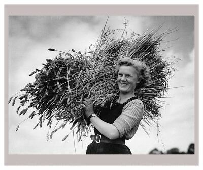 Photographic Print, Women at War - On the Land, WWII