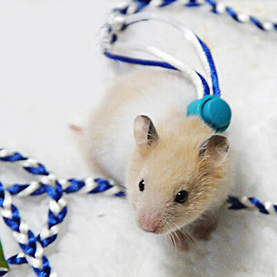 1PC Animal Leash Rope For Hamster Mouse Squirrel Sugar Glider Harness Leashes