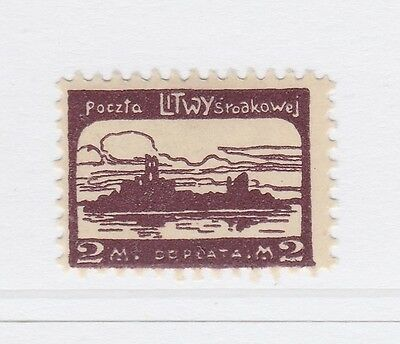 A2P40 CENTRAL LITHUANIA POSTAGE DUE STAMP 1920-21 2m MH*