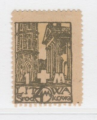A2P40 CENTRAL LITHUANIA SEMI-POSTAL STAMP 1921 4m + 1m MH*