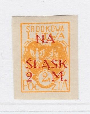 A2P40 CENTRAL LITHUANIA SEMI-POSTAL STAMP 1921 SURCH 2m + 2m MH* #2