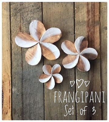 Hand Carved Timber Frangipani Flowers - Set of 3 Home Decor / Wall Hangings