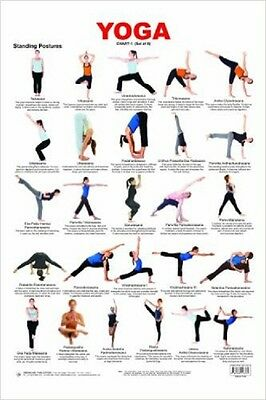 Educational Training Learning Exercise Yoga Wall Chart Poses Posture Practice