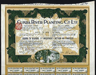 1914 London: Cukra River Planting Co Ltd - Nicaragua, with Banana Vignettes