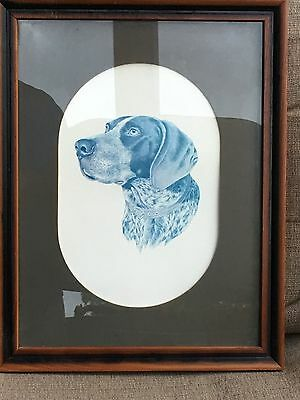 German Short-Haired Pointer Dog Print - Roger Cruwys 1982, Framed and Matted