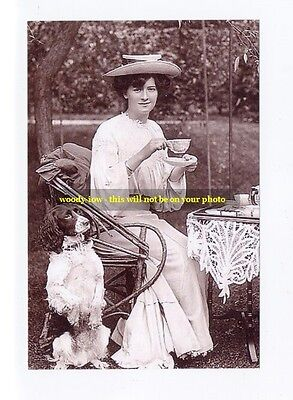 """mm242 - stage actress Millie Legarde & dog at tea - photo 6x4"""""""