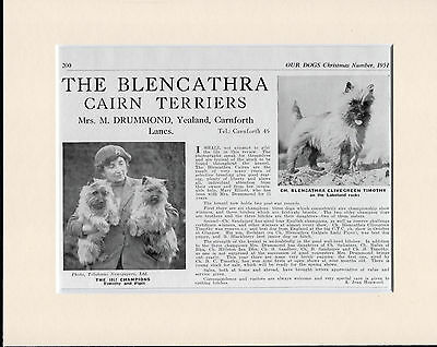 Cairn Terrier Named Dogs Old 1950's Dog Kennel Advert Print Ready  Mounted