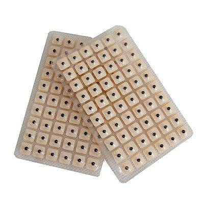 600pcs Magnetic therapy ear patch Auriculotherapy Acupuncture Seeds paste Good