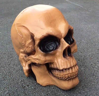 Life Sized Skull Prop Hollow Halloween Decoration Horror Bone Costume Head