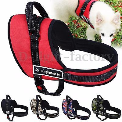 XS-XL Size Adjustable Soft Padded Non Pull Pet Dog Puppy Harness Chest Vest