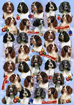 English Springer Spaniel Dog Christmas Wrapping Paper Design by Starprint