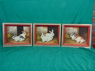 """Lot of 3 Bunnies 10""""x12"""" OIL on Canvas PAINTINGS Framed Rabbits Bunny Animals"""
