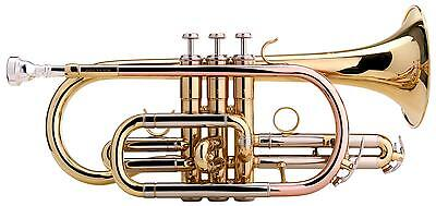 Professional Cornet Horn Bb Tuning Gold Brass Stainless Steel Valves Incl. Case