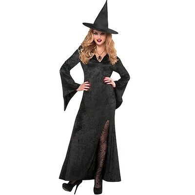 Witch Costume Womens Halloween Black Adult Fancy Dress Only