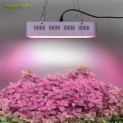 Newset Full Spectrum 300W LED Grow Light 60*5W Garden Plant Hydroponic Used Lamp