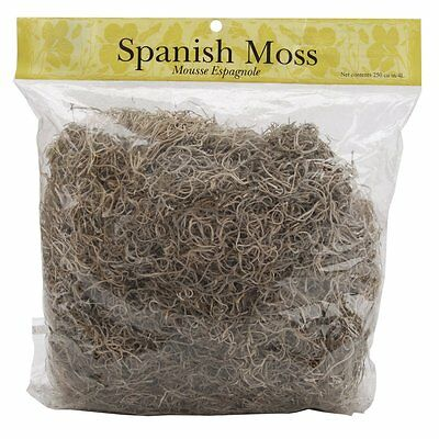 Panacea Spanish Moss, 8-Ounce, Natural, It is durable, Easy to use [421278] AOI