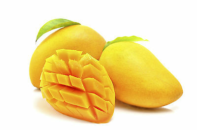 3 fresh tropical mango tree/plant/fruit seeds from Asia