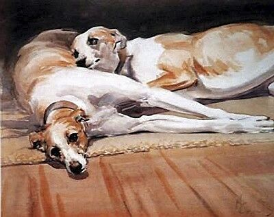 "WHIPPET HOUND DOG FINE ART LIMITED EDITION PRINT - by Malcolm Coward - ""Resting"""